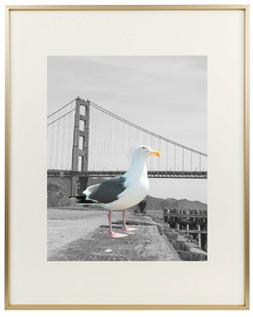 Frametory, 16x20 Metal Picture Frame Collection, Aluminum Ph